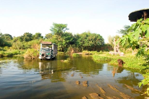 safari journey bali