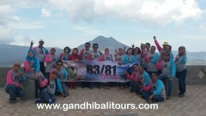 Paket Tour Group